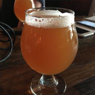 BTM: Beer of the Week at Arbor Brewing (Ann Arbor)