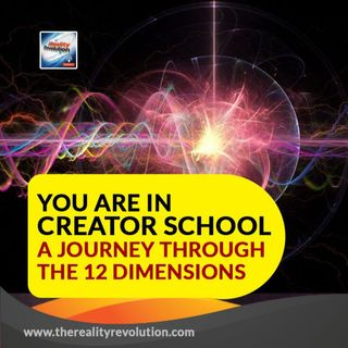 You Are In Creator School A Journey Through The 12 Dimensions