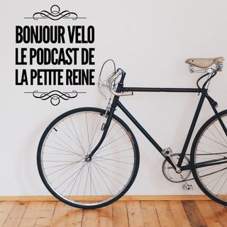 Le vélo hollandais