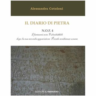 A sette anni in manicomio: Fernando Nannetti visto da Alessandra Cotoloni