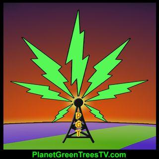 Steve Miller on Komorn Law Cannabis Business Solutions
