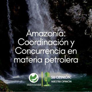Amazonía: Coordinación y Concurrencia en materia petrolera