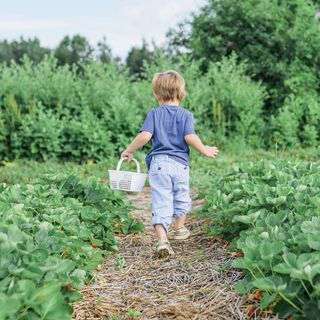 April 14: National Gardening Day 🌺