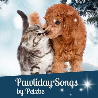 It's Christmastime for pets with Petzbe's Chelsea Williams and Andrea Nerep singing Pawliday Songs!