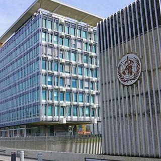 Trattato internazionale per le pandemie: l'Italia firma. Dubbi sull'Oms in Cina