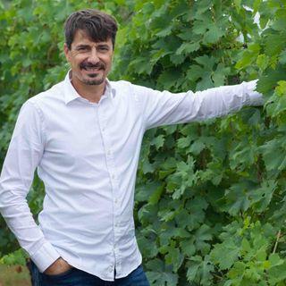 Pierangelo Tommasi | Maestri del vino italiano
