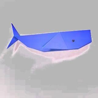 ballena de papel/may-day