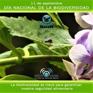 NUESTRO OXÍGENO 11 de sept Día Nacional de la Biodiversidad
