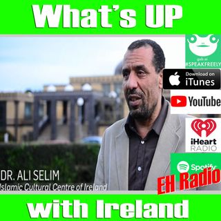 Morning moment Ireland's Anti-Israel Bill and the Muslim Brotherhood Oct 12 2018