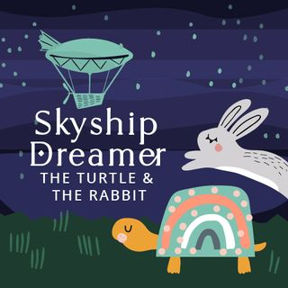 SkyShip Dreamer The Turtle and the Rabbit