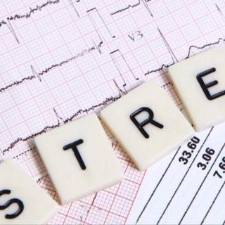 #bruxelles Les cours, quel stress!!