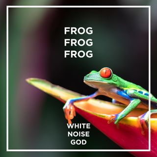 Frogs are Singing | White Noise | ASMR sounds for deep Sleep Better | Relax | Study | Work