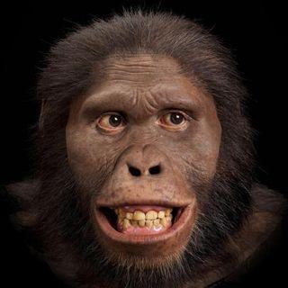 L'atmosfera in cui viviamo è la stessa di 3 milioni anni fa, quando...