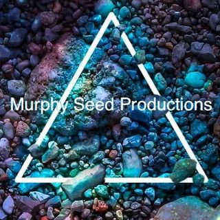 Murphy Seed ft Reack -- Them Sell Out