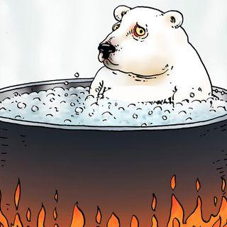 #castelguelfo Changement climatique: qu'est-ce que on peut faire?