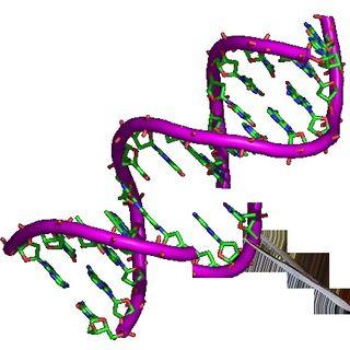 Coming Genetic Apocalypse