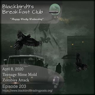 Teenage Slime Mold Zombies Attack - Blackbird9 Podcast