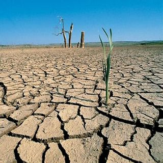 Pega sequía a más de 80 por ciento del país