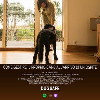 #041 - Come gestire il proprio cane all'arrivo di un ospite.