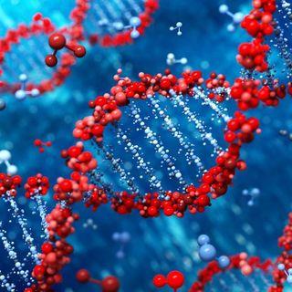 Unidad 3: La genética