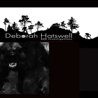 Part 2 - Delamere Forest - Strange Orb Lights, Screaming in Pain and a Grey Humanoid Creature