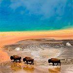 BlitzoCast 050 - Impresiones de Yellowstone