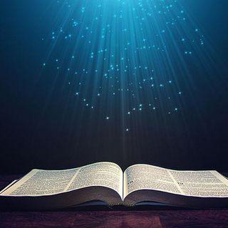 God's Plan Revealed II
