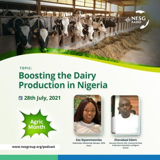 Boosting The Dairy Production In Nigeria