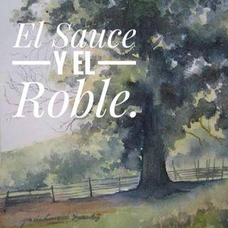 Podcast 3. El Sauce y el Roble. Por Ivan Flores Pacheco.