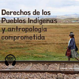 Derechos de los pueblos indígenas y antropología comprometida