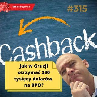 #315 Jak w Gruzji otrzymać 230 tysięcy dolarów na BPO?