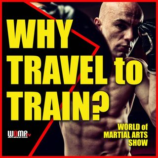 Why TRAVEL to Train?  WHY BOTHER?