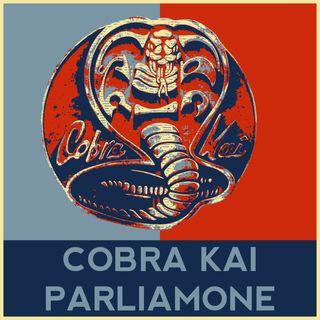 Cobra Kai l'hai visto? Parliamone!