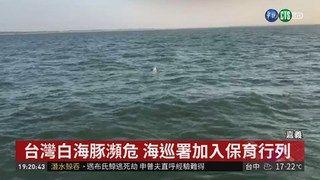 19:57 6隻白海豚陪游 海巡艇弟兄驚喜搶拍 ( 2019-03-10 )