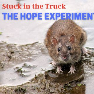 The hope Experiment ep 84 4-28-2021