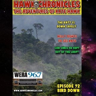 "Episode 92 Hawk Chronicles ""Bird Down"""