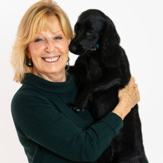The World of Pet and House Sitting - Angela Laws on Big Blend Radio