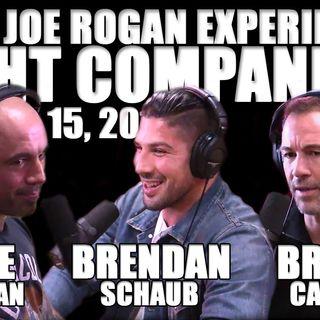 Fight Companion - January 15, 2017