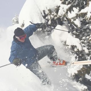 Hitting Trees While Skiing