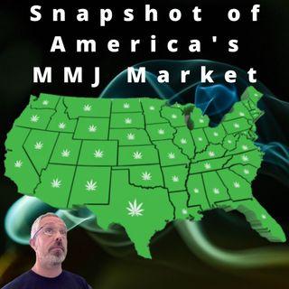 Snapshot of America's MMJ Markets