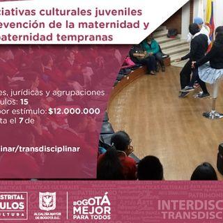Escuche las iniciativas culturales juveniles para fortalecer la prevención de Maternidad y Paternidad temprana