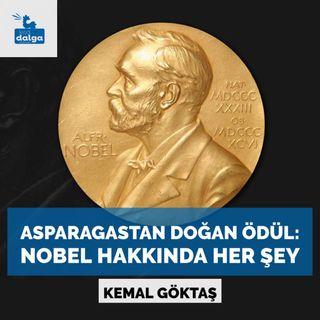 Asparagastan doğan ödül: Nobel hakkında her şey