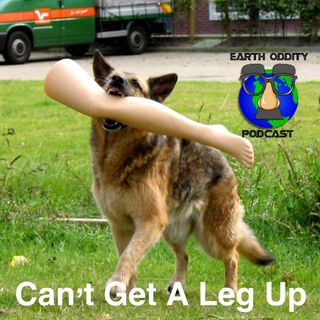 Earth Oddity 65: Can't Get a Leg Up