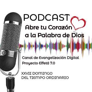 XXVII DOMINGO DEL TIEMPO ORDINARIO 04 OCTUBRE 2020