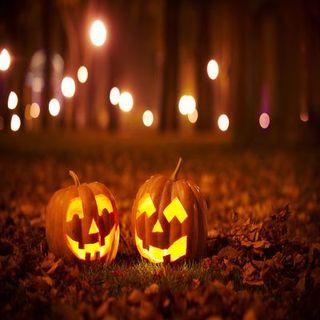 Halloween Interviews