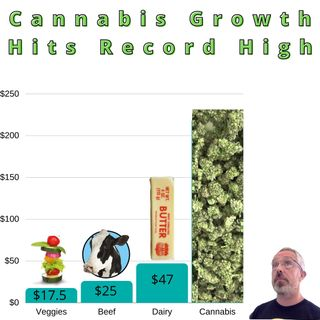 Record Canadian Cannabis Sales, and Inventory