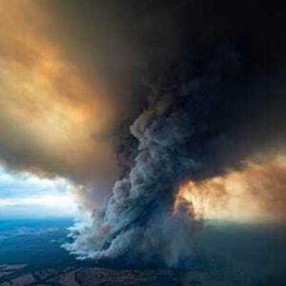 Wildfires - Climate Change + Criminal Justice Reform
