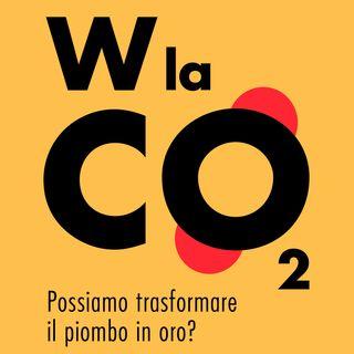 "Gianfranco Pacchioni ""W la CO2"""