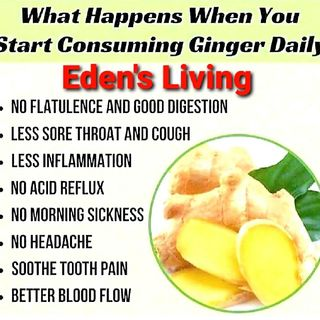 What Happens When you CONSUME GINGER