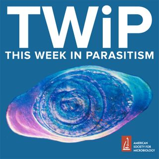 TWiP #19 - Enterobius vermicularis, the pinworm